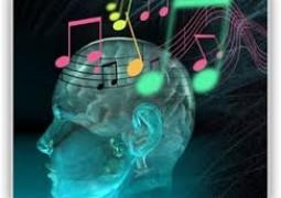 تفاوت مغز موسیقیدانها با آدمهای معمولی