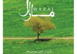 آلبوم «مارال» منتشر میشود + عکس