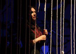 کنسرتی با اجرای دو بازیگر زن سینما + تصاویر