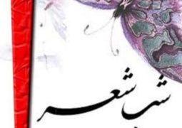 شعرخوانی شاعران جوان در «ترانه مهر»