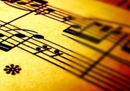 کدام سبک موسیقی در ایران پرطرفدارتر است؟ + تصاویر